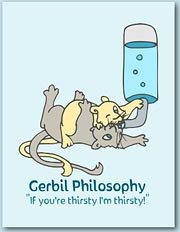 Design featuring a a pair of gerbils having a playfight tussle over a water bottle with the message 'If you're thirsty I'm thirsty'.