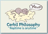 Cute design of a tired gerbil stretching and yawning on his nest with a speech bubble that reads 'Yawn' and the message 'Naptime is anytime'.